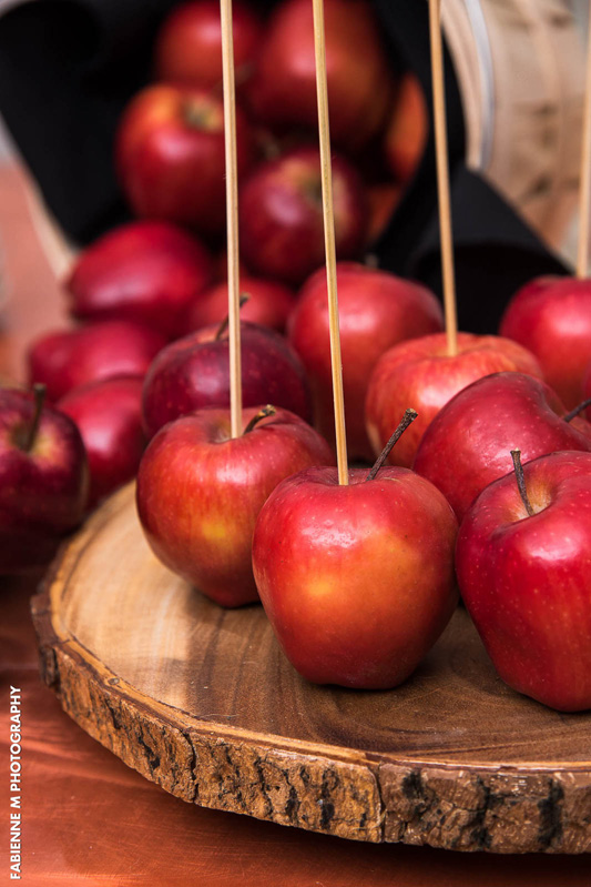 2015-Catering-Menu_Apple-Dipping_02